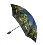 Зонт Gilux G3F 22FALT P (расцветка 246)